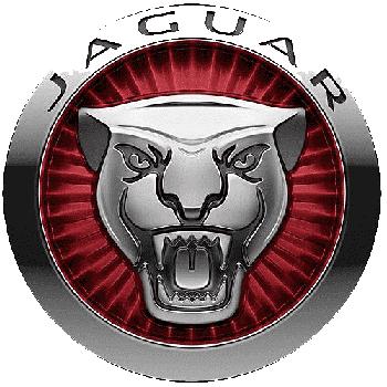 Llaveros jaguar económicos